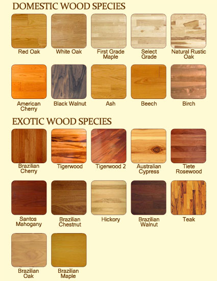 Domestic hardwood flooring species for Domestic hardwood